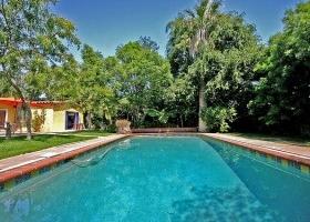 Img piscina arboles art