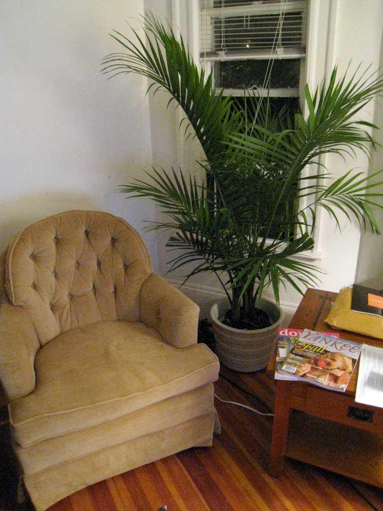 img_planta interior