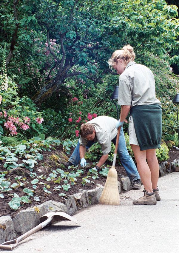 Img plantar jardin