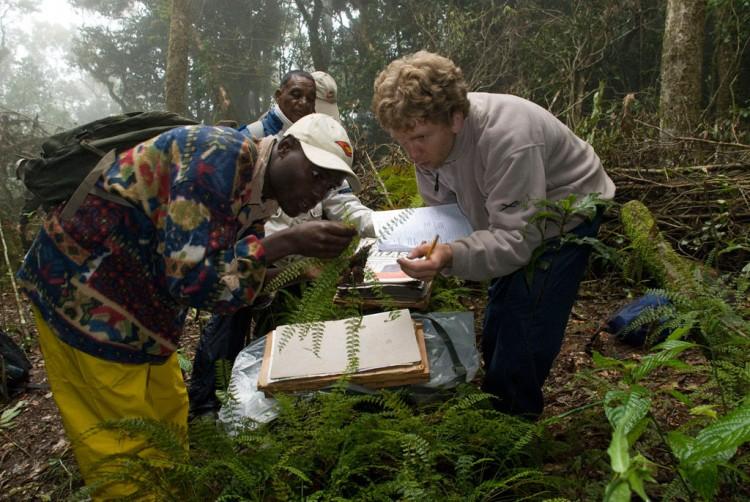 Img plantaspeligro biodiversidad