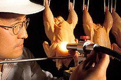 Img pollos5