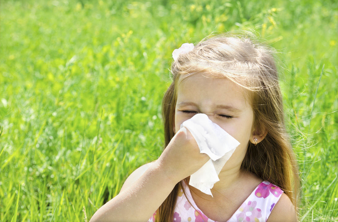 Img prevenir alergias bb hd