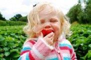 img_prevenir obesidad infantil listp