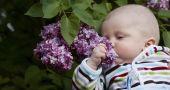 Img primero huele bebe hd