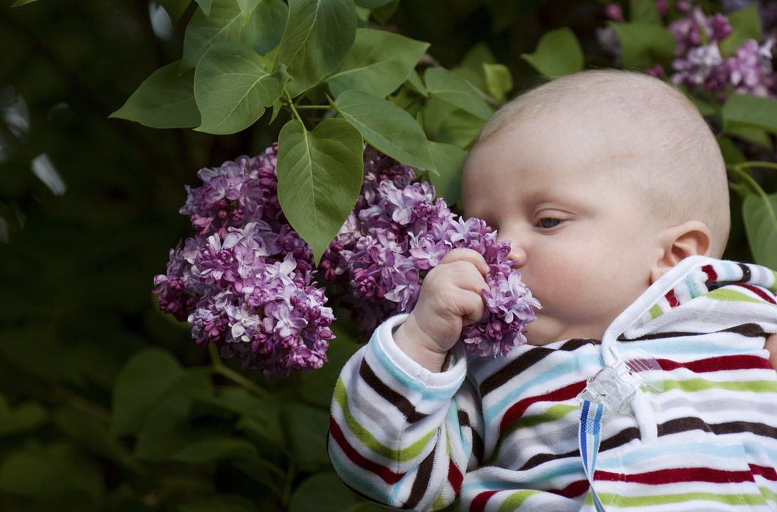 img_primero huele bebe hd