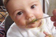 img_pure verduras potitos bebe alimentacion ninos listado