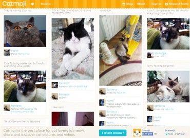 Img redes sociales gatoss art