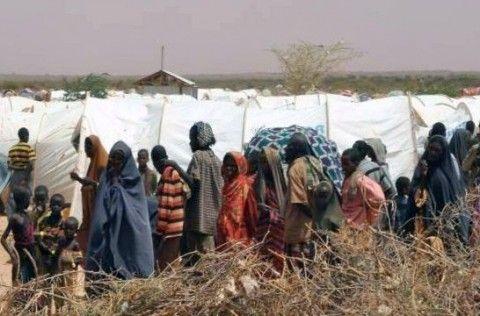 Img refuguiados somalia art