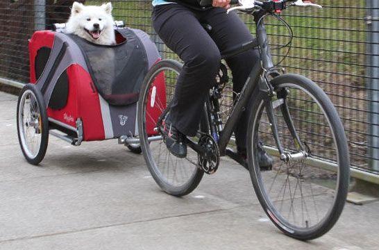 img_remolque bici