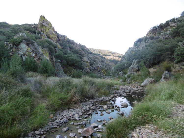 Img reservas naturales fluviales 02