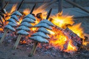 Img sardina verano azul