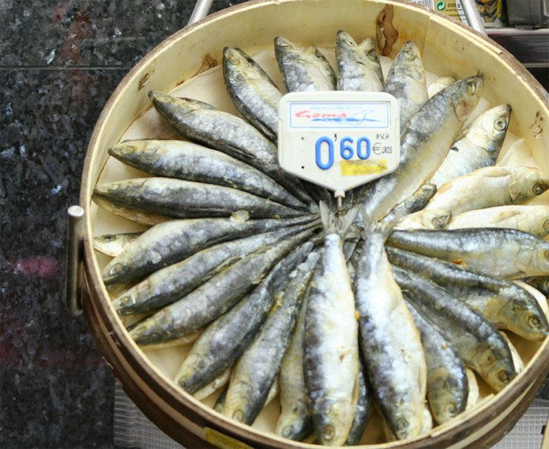 Img sardinas