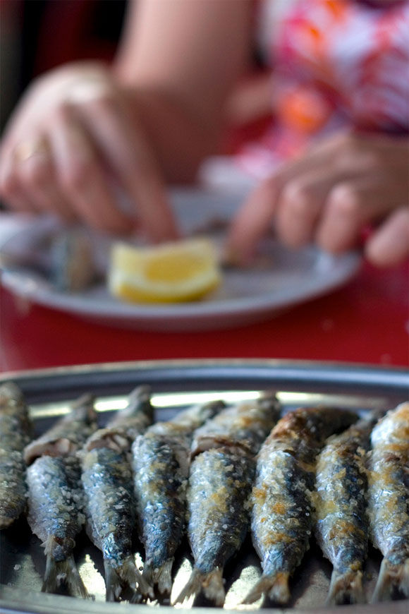 img_sardinas 9