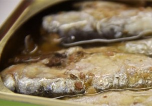 Img sardinas aceite gatos cuidar pelajes mascotas art