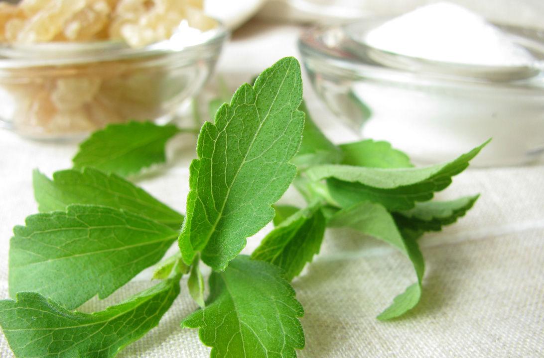 Img stevia educorante hd