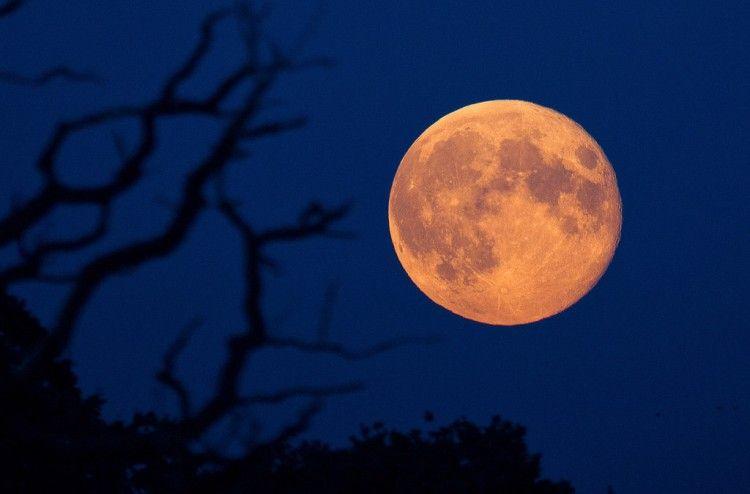 Img super luna