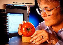 Tomate3 bereizmena