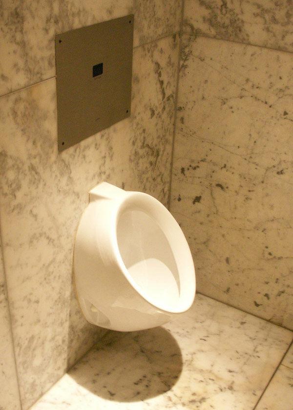 Img urinario