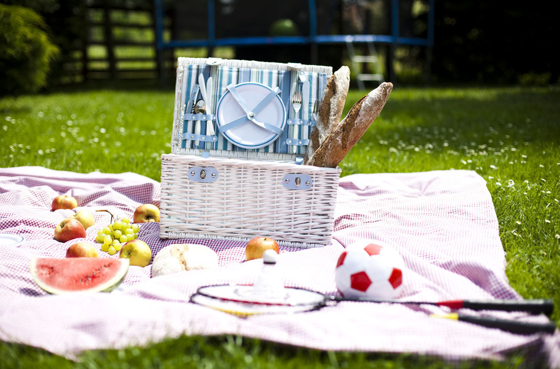 Img vas picnic anota consejos hd
