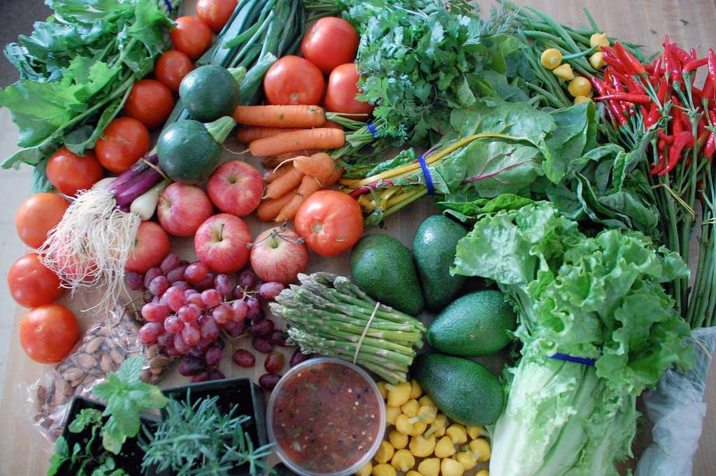 img_vegetales 14