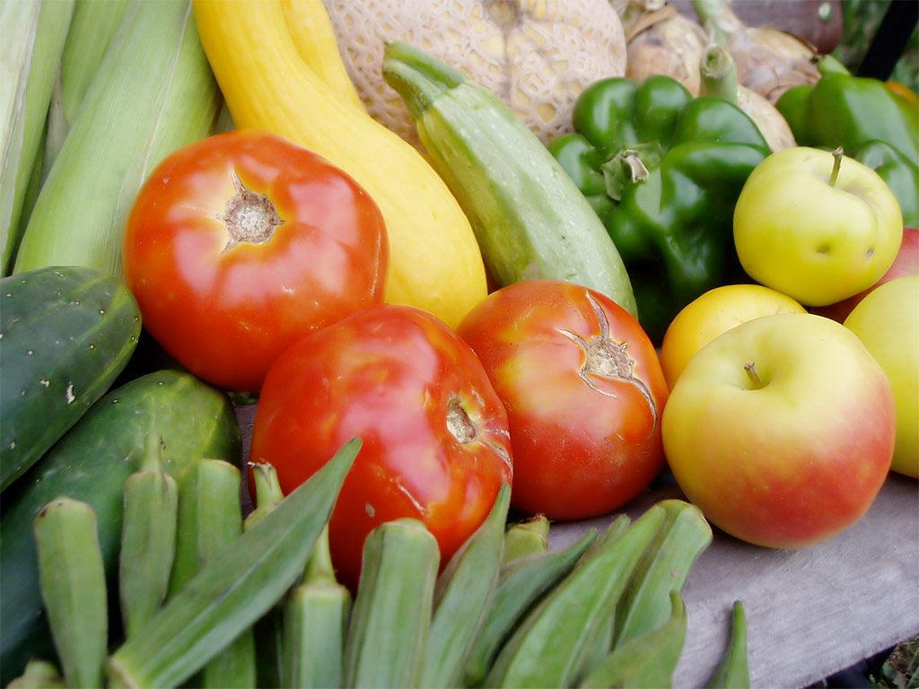 Img vegetales