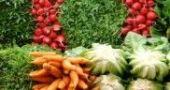 Img vegetales listado