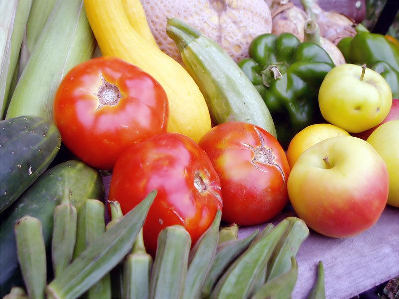 img_verduras 4