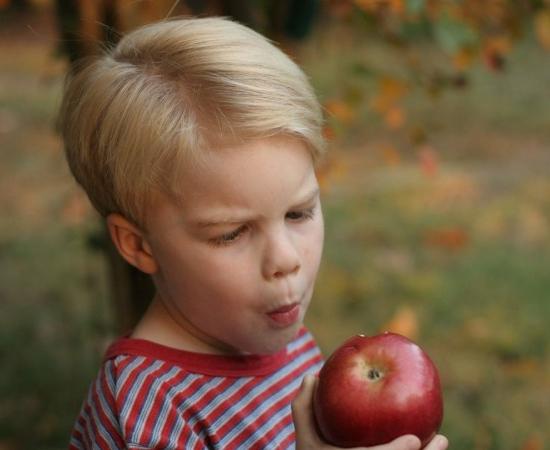 Img videos alimentos infantiles art