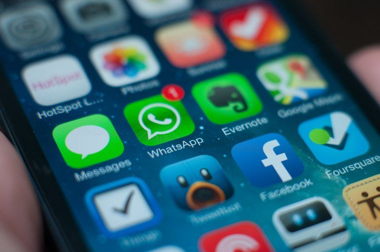 Img whatsapp cuidado timos
