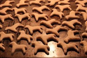 Img wwwimgs201211galletas perro recetas alimentacion caseras art