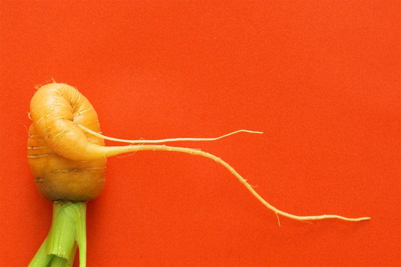 Img zanahoria deforme