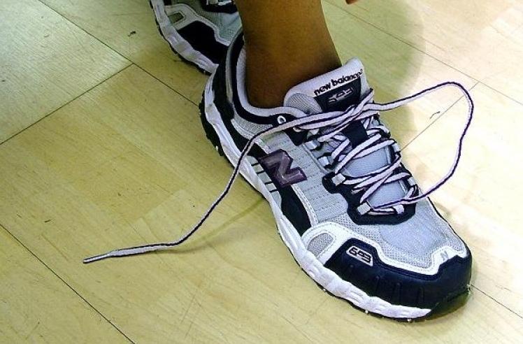 Img zapatillas deporte perros art