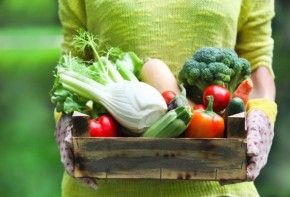 Img zonas mas verduras