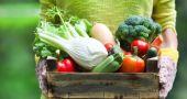 Img zonas mas verduras hd