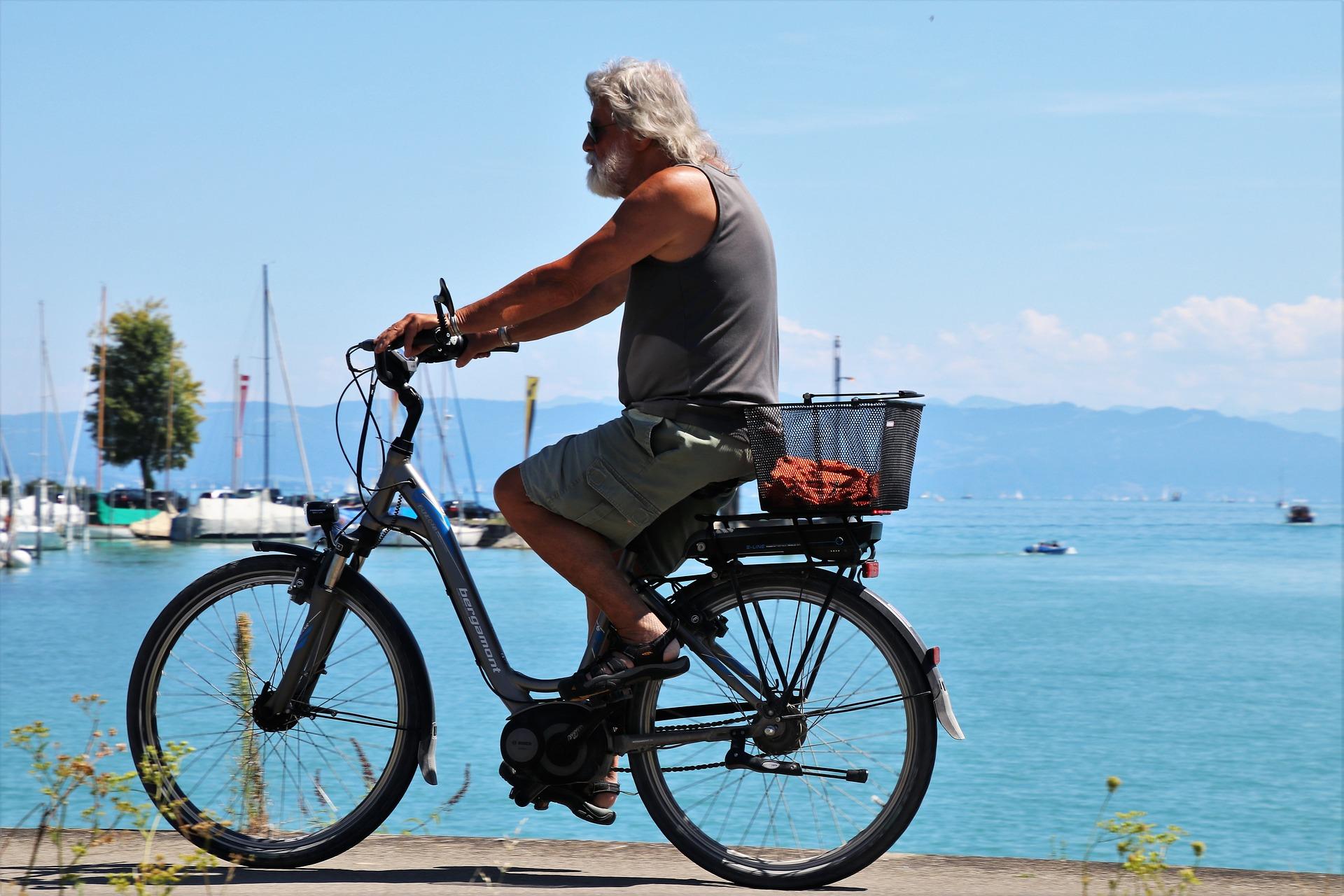 Bike electr