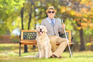 ciego perro guia