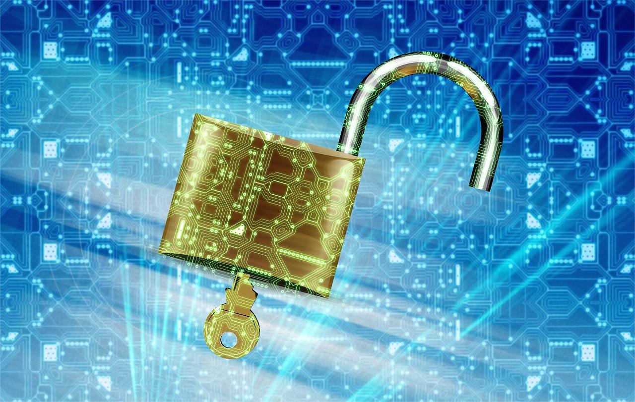 Datos internet contrasena