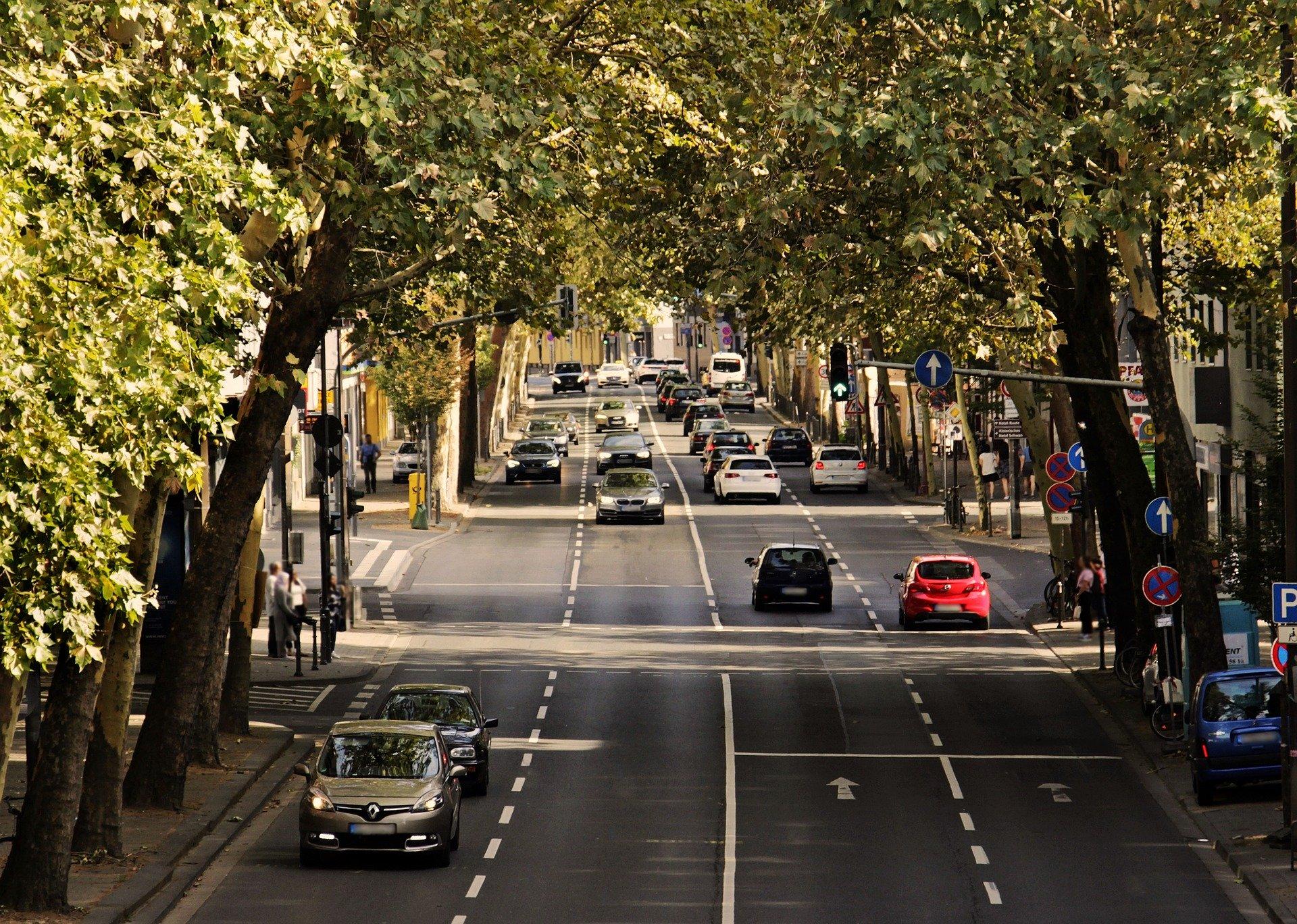 Trafico calle