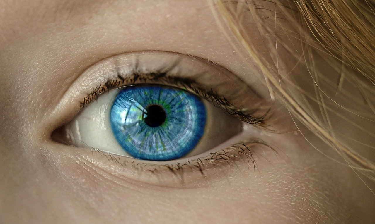Ojo vista