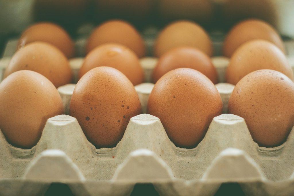En manual de supervivencia, los huevos siempre en nevera