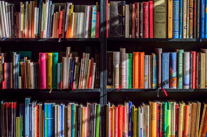 libros estanteria