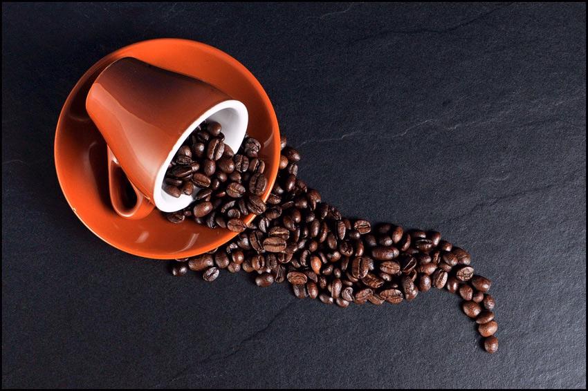 cafe furanos dioxinas