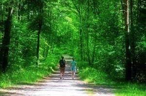 via verde andar