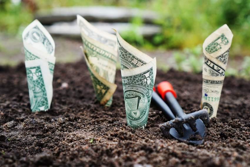 Slow finantzak eta koronabirusak