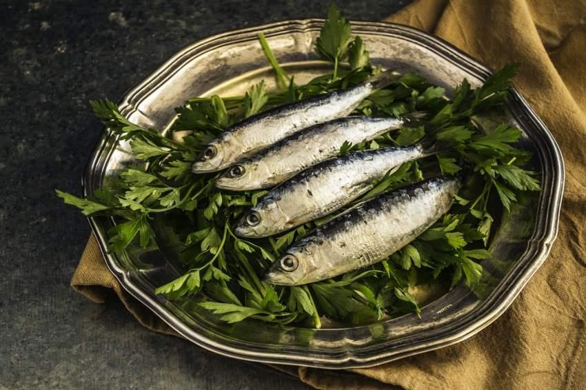 sardina vitamina D