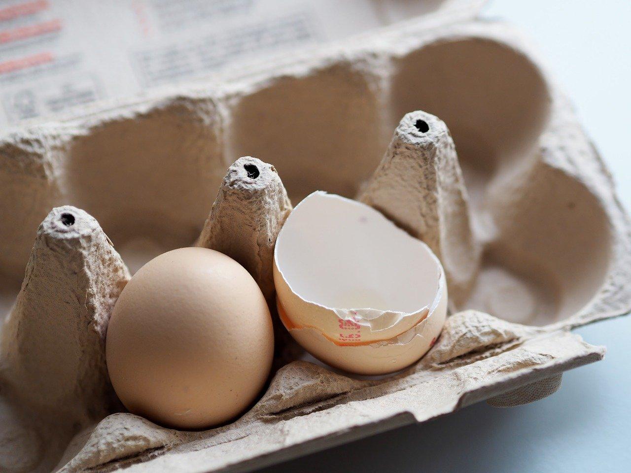 huevos_cascara