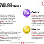 Minerals i defenses