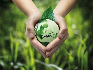 ecologia sostenibilidad
