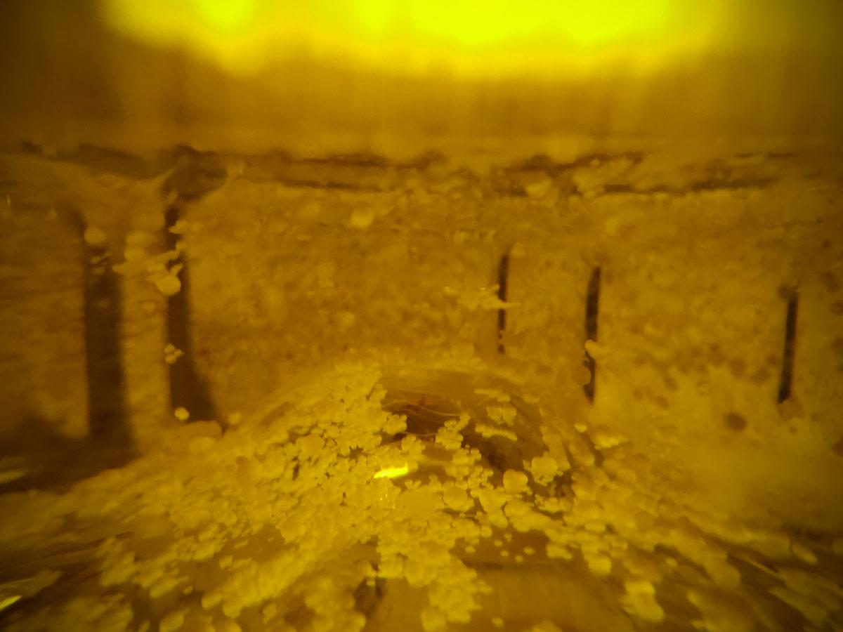 aceite oliva grumos que son