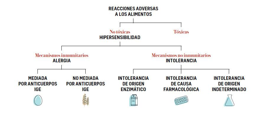 alimentos tipos reacciones adversas